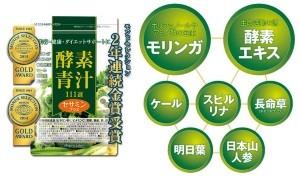 09kousoaojiru111
