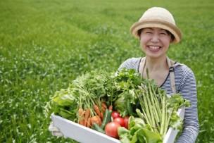 安全な食材を収穫
